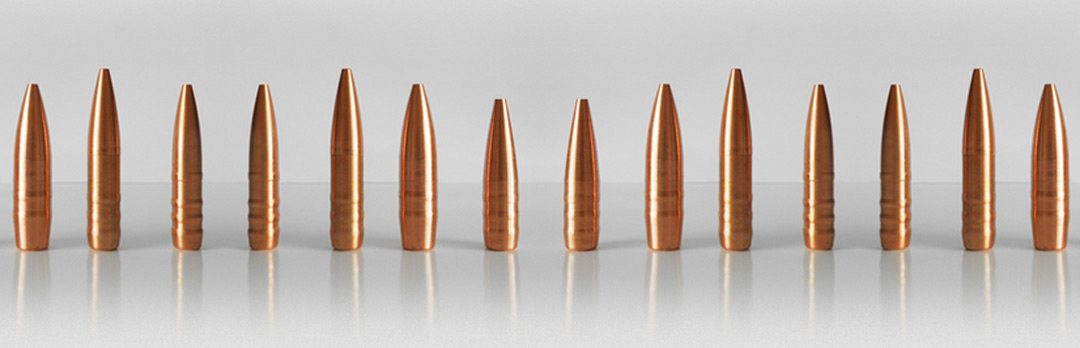 Monolithics Bullets | Hasler – Competition & Hunting Bullets